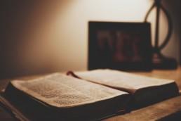 David in Goliath - bible